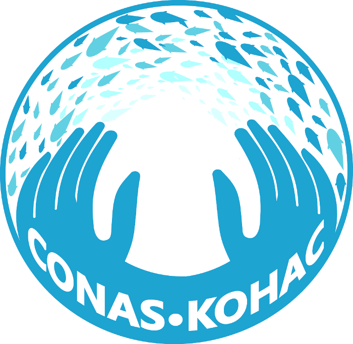 The CONAS Project